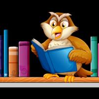 biblioteka_sowa